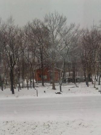 4月26日(日) ゆ ゆ 雪でっか(゚o゚)_d0082944_0545725.jpg