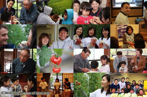 静岡県牧之原市にてお茶を通じた気づきプログラム_c0067646_150271.jpg