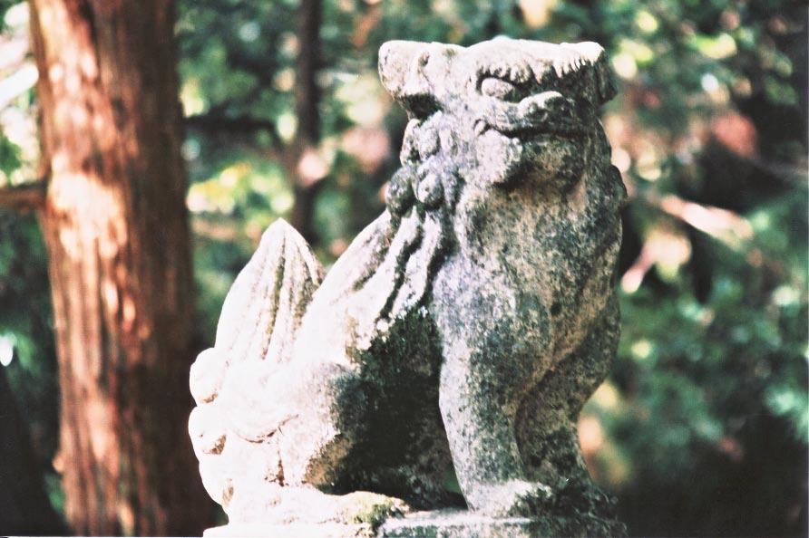 新緑の三宮神社_e0156251_6252164.jpg