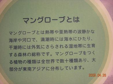 f0160860_11473676.jpg