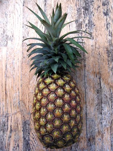ホワイトパイナップル, white pineapple