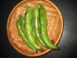 豆の季節_f0061394_1255284.jpg