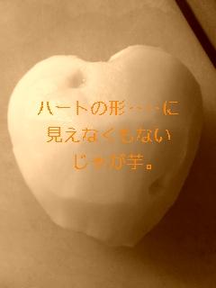 b0153703_15333839.jpg