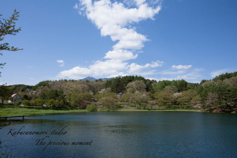 09/4/28          新緑のみどり湖畔_c0137403_17465010.jpg