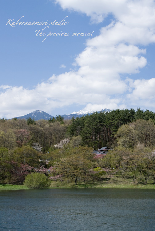09/4/28          新緑のみどり湖畔_c0137403_17472435.jpg