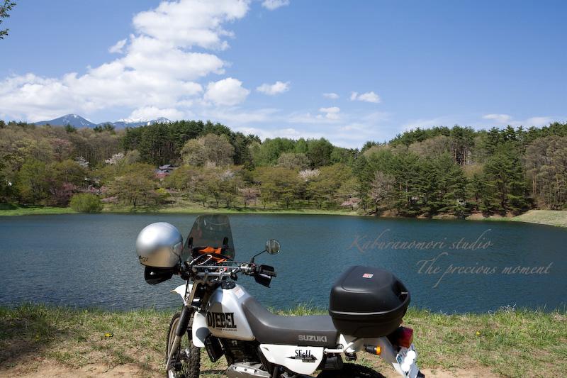 09/4/28          新緑のみどり湖畔_c0137403_1818292.jpg