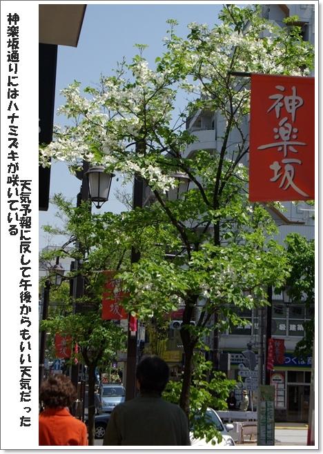 b0019313_2010546.jpg
