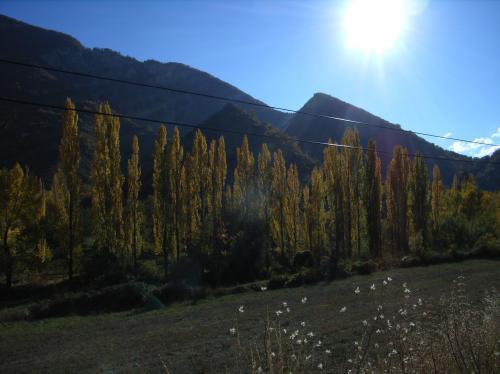 木を植えた男_c0177135_21533332.jpg