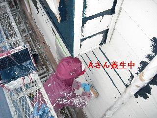 塗装工事5日目・・・外壁塗装開始_f0031037_22102072.jpg