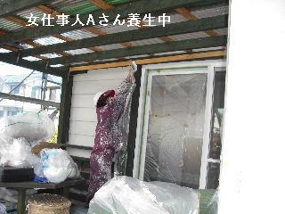 塗装工事5日目・・・外壁塗装開始_f0031037_229499.jpg