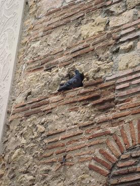 (番外編)Segovia散策&白雪姫のお城・後半っの巻_e0120938_17472431.jpg