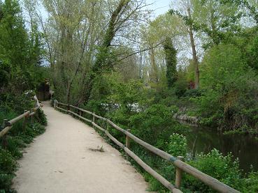 (番外編)Segovia散策&白雪姫のお城・後半っの巻_e0120938_17542023.jpg