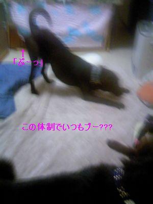 b0148945_2115919.jpg