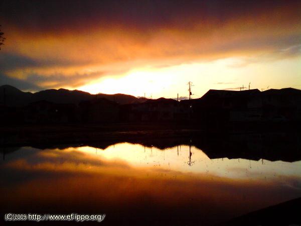 雨上がりの夕焼け_c0067646_9263251.jpg