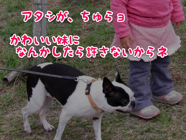 f0166359_23553027.jpg