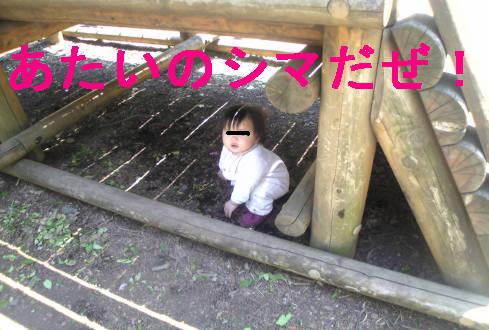 f0123589_2144648.jpg