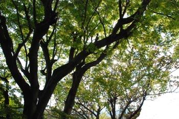 春の祝日_e0103024_2316159.jpg