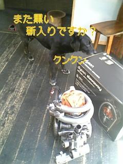 f0148927_12113077.jpg