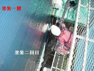 塗装工事6日目_f0031037_2053296.jpg