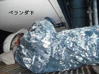 塗装工事6日目_f0031037_20535791.jpg