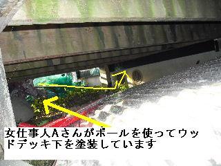 塗装工事6日目_f0031037_205436100.jpg