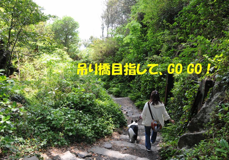 c0147241_2053555.jpg