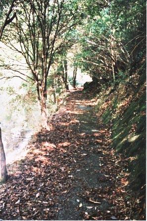 桃太郎岩    Road of the Momotaro\'s rock_e0156251_7195917.jpg