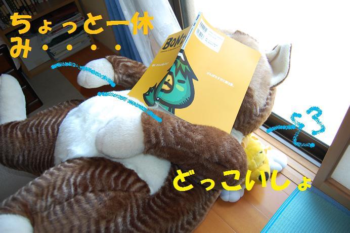 b0059978_13245476.jpg