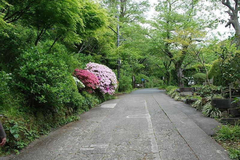 鎌倉③_c0187781_10385359.jpg
