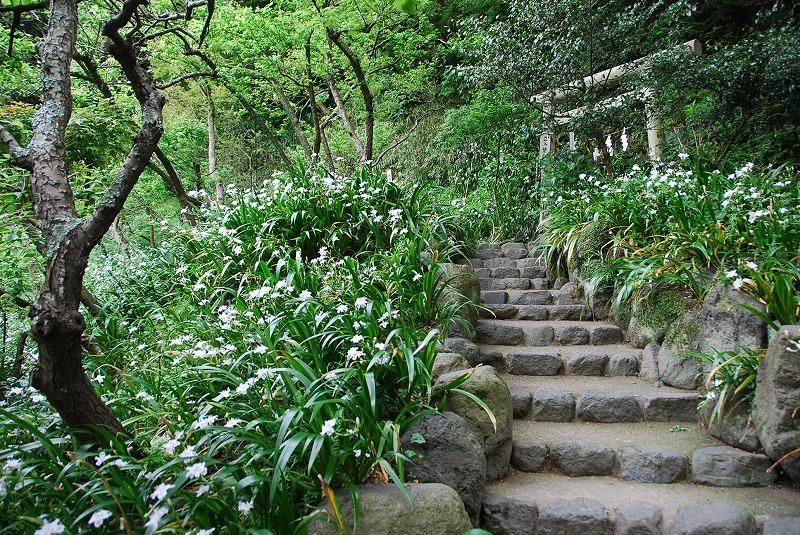 鎌倉③_c0187781_1145798.jpg
