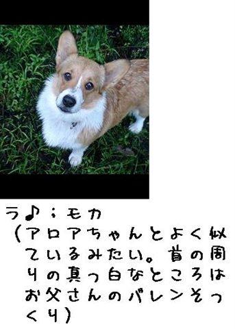 b0122401_22292634.jpg