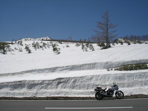 雪の回廊_d0115409_2258391.jpg