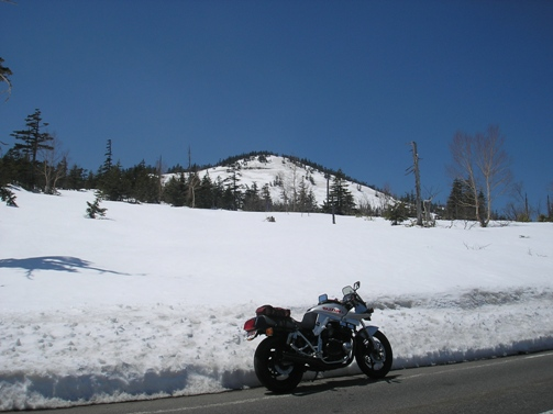 雪の回廊_d0115409_2301945.jpg