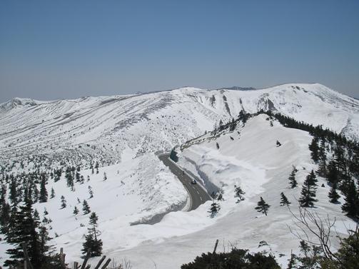 雪の回廊_d0115409_23513.jpg