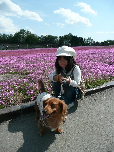 お花見遠足 市貝町ととっちゃん家_b0116313_16251922.jpg
