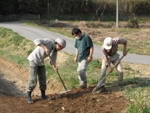 田んぼに籾殻をまく_c0167329_17192031.jpg