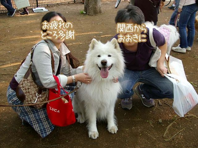 ウマウマ昭和の日_c0062832_16413640.jpg