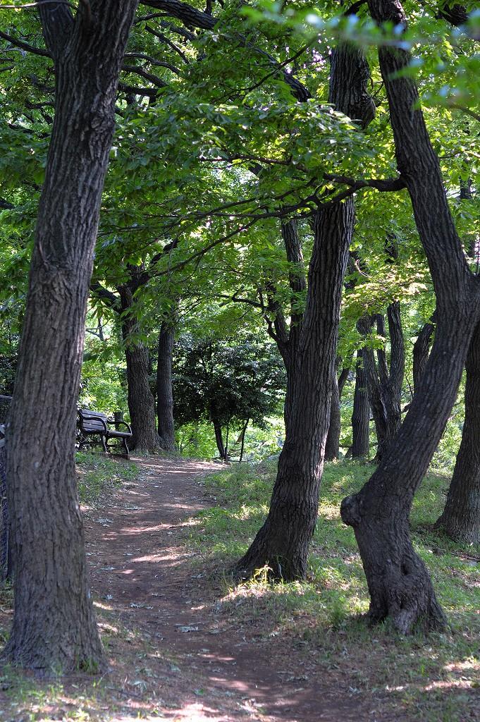 f0109432_2010166.jpg
