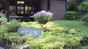 鎌倉散策_b0084241_9543373.jpg