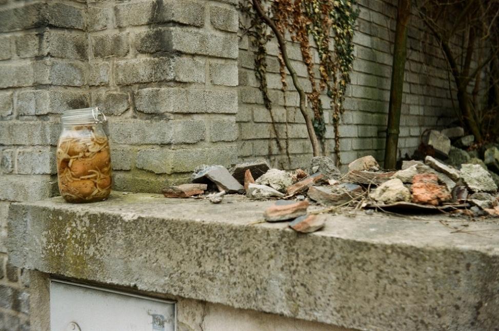 死体 の掲示板投稿写真&画像