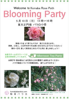 駒場バラ会 ブルーミングパーティ!_a0094959_1381094.jpg