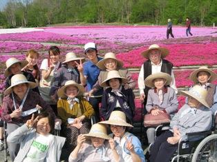 とってもキレイな芝桜・・・_e0142373_16554921.jpg
