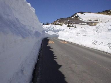 雪の回廊_d0115409_0141057.jpg