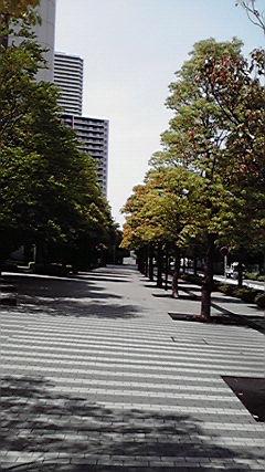 散歩_d0118072_1285022.jpg