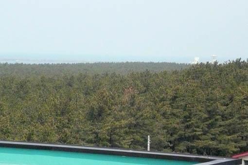 景林神社例大祭と風の松原 2_e0054299_11513796.jpg