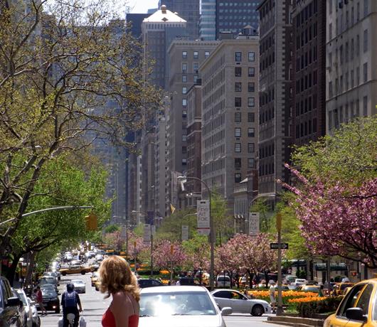 ニューヨークの桜シーズン_b0007805_1224113.jpg