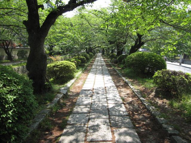 京都観光ダイジェストその1_b0042308_12161916.jpg