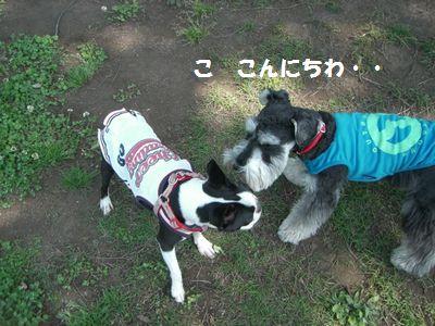 f0197317_151941.jpg