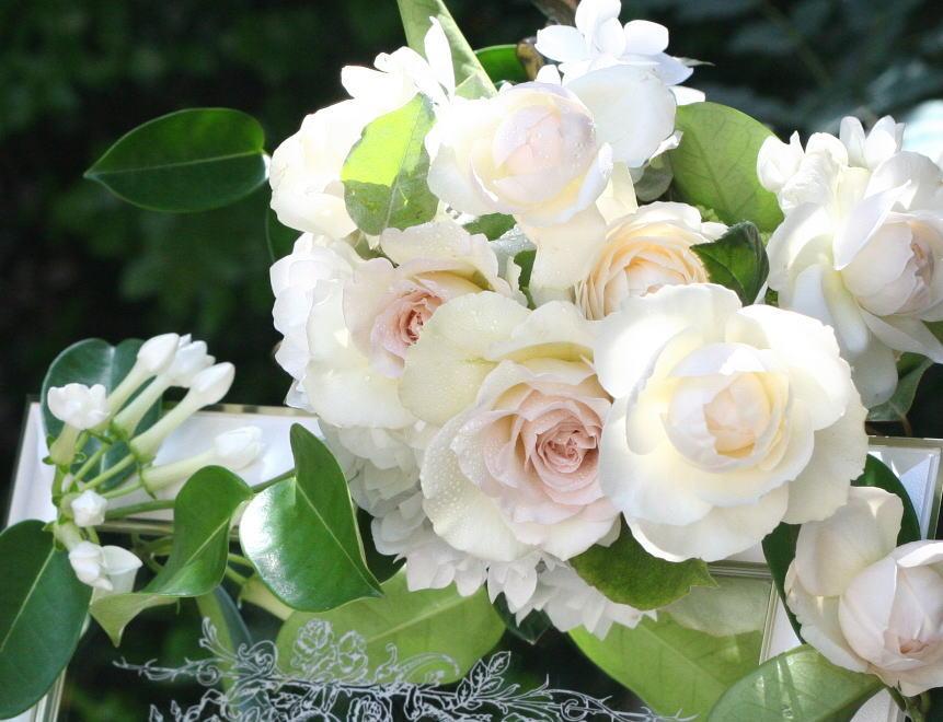 シェ松尾松濤レストラン様の装花 ジャスミン_a0042928_21243347.jpg