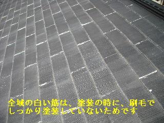 f0031037_19491927.jpg